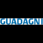 Concessionaria Guadagni