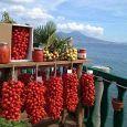 O' Sarracino cucina napoletana