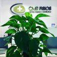 CMR Fisios - Centro Medico Riabilitativo sala massaggi