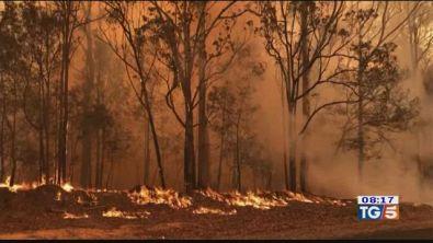 L'Australia brucia