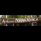 Agriturismo Donna Bianca - Ristorante - Area Camper - B&B - Cucina Tipica