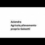 Aziendra Agricola,allevamento proprio Galeotti
