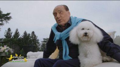 Gli amici a quattro zampe di Silvio Berlusconi