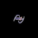 Net 1 Soluzioni Informatiche Srl