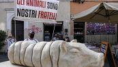 La statua della porchetta che ha indignato gli animalisti