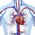 PESCIATINI FRANCO cardiologo