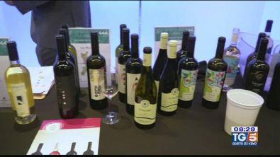 Gusto di Vino - Il vino italiano in Canada