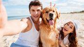Fido in spiaggia, 7 regole da rispettare