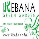 Ikebana srl - Green Garden