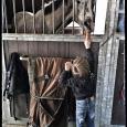 scuderia del sole cavalli