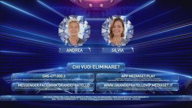 Chi vuoi eliminare tra Silvia e Andrea?