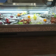 Pufferfish pescheria ristorante