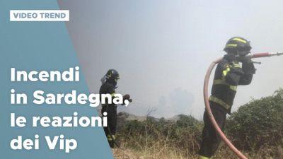 Incendi in Sardegna, le reazioni dei Vip
