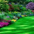 Garden Flower manutenzione del verde pubblico
