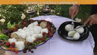 La mozzarella di bufala Campana Dop